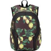 Рюкзак школьный Kite Beauty 953-2 для девочки 5-11 кл