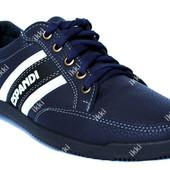 Мужские демисезонные кроссовки синие (БЛ-19с)