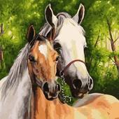 Лошади Набор для рисования по номерам