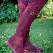 4 цвета!!!сапоги/ботфорты натуральная замша/кожа демисезон /зима код Дю