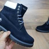 Зимние женские ботинки Timberland dark blue