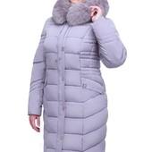 Пальто Дайкири 2