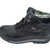 Ботинки мужские кожа зимние на меху Multi Shoes Dion