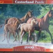 Пазл 2000 Castorland