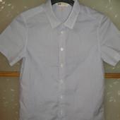 отличная рубашка с коротким рукавом от H&M  легкая глажка! р.134 8-9лет