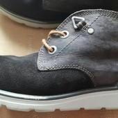 Кожаные на шерсти фирменные ботинки Ecco р.37-23.5см