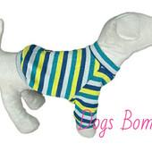 Свитер-кофточка для собак Dogs Bomba