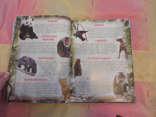 Большой, красочный атлас животных. глянцевые страницы! фото №2