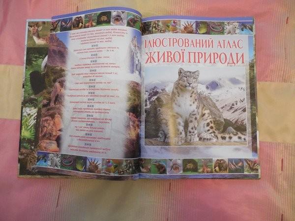 Большой, красочный атлас животных. глянцевые страницы! фото №3