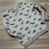 Свитшот, кофта с динозаврами Nutmeg (2-3 года)