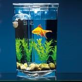 Аквариум самоочищающийся My Fun Fish, для рыбок или сомика