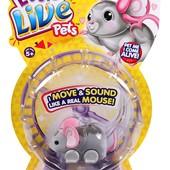 Интерактивная мышка Little Live Pets Lil' Mouse