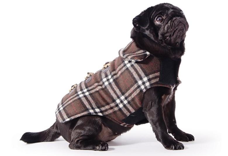 Одежда для собак Ancol пальто б\у фото №1