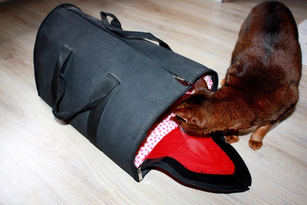 Сумка-переноска для кошки фото №1