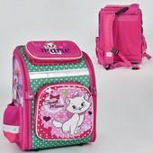Рюкзак школьный N 00179 2 кармана, спинка ортопедическая