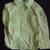 1,5-2 г (92) рубашка для девочки Chicco