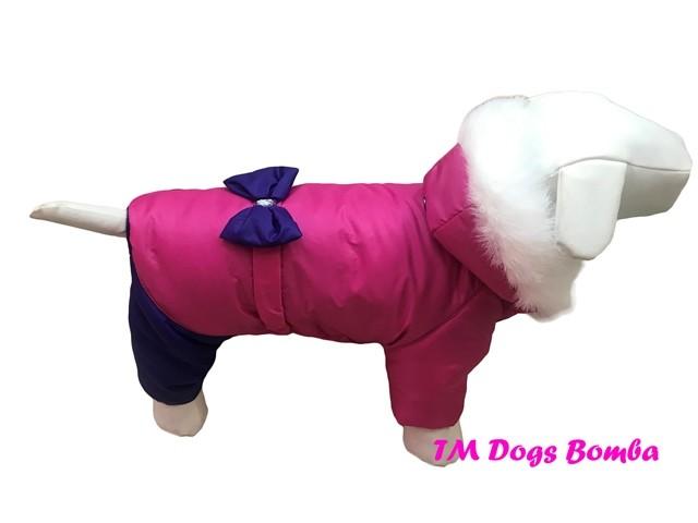 Зимний комбинезон для собак a-d фото №1
