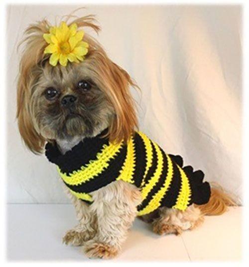 Кофта пчелка для собачки фото №1