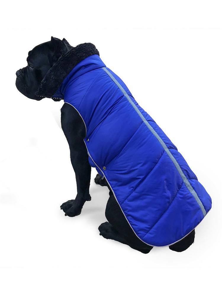 Одежда для собак попона зимняя для средних собак на синтепоне подклад флис унисекс с фото №1