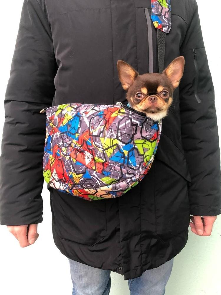 Сумка-слинг для собак фото №1